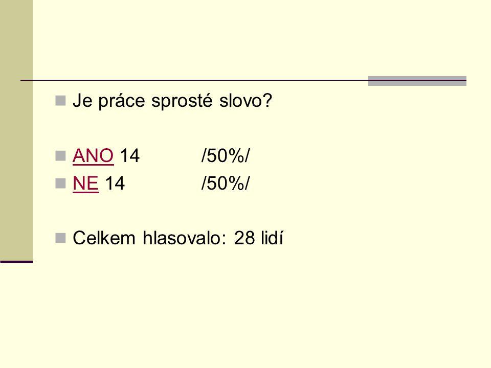 Je práce sprosté slovo ANO 14 /50%/ NE 14 /50%/ Celkem hlasovalo: 28 lidí