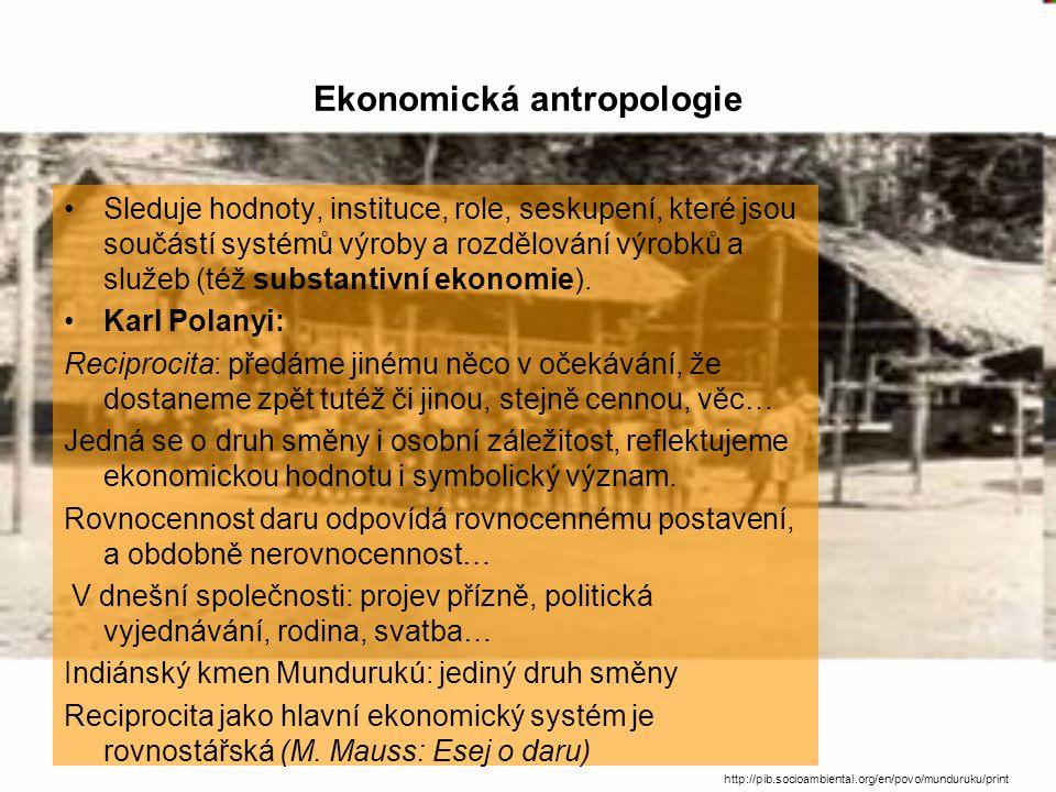 Ekonomická antropologie