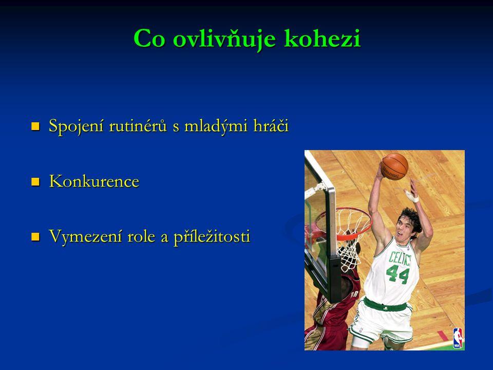 Co ovlivňuje kohezi Spojení rutinérů s mladými hráči Konkurence