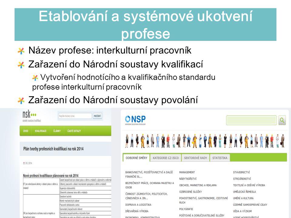 Etablování a systémové ukotvení profese