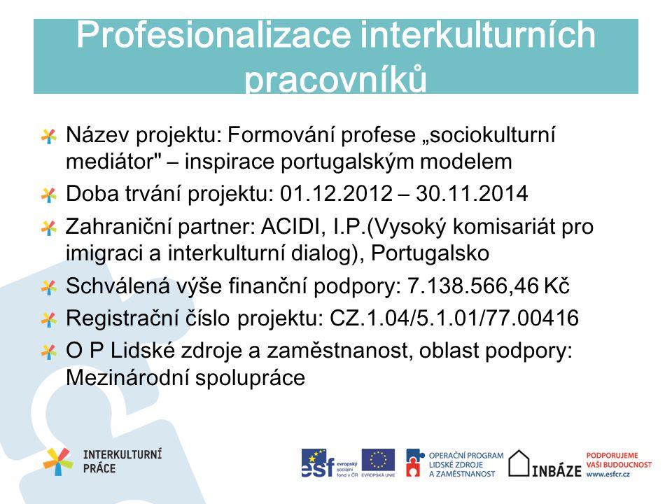 Profesionalizace interkulturních pracovníků