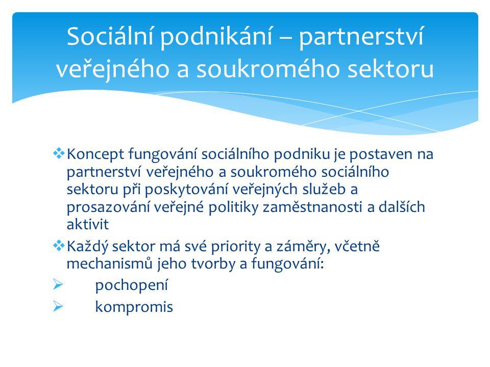 Sociální podnikání – partnerství veřejného a soukromého sektoru