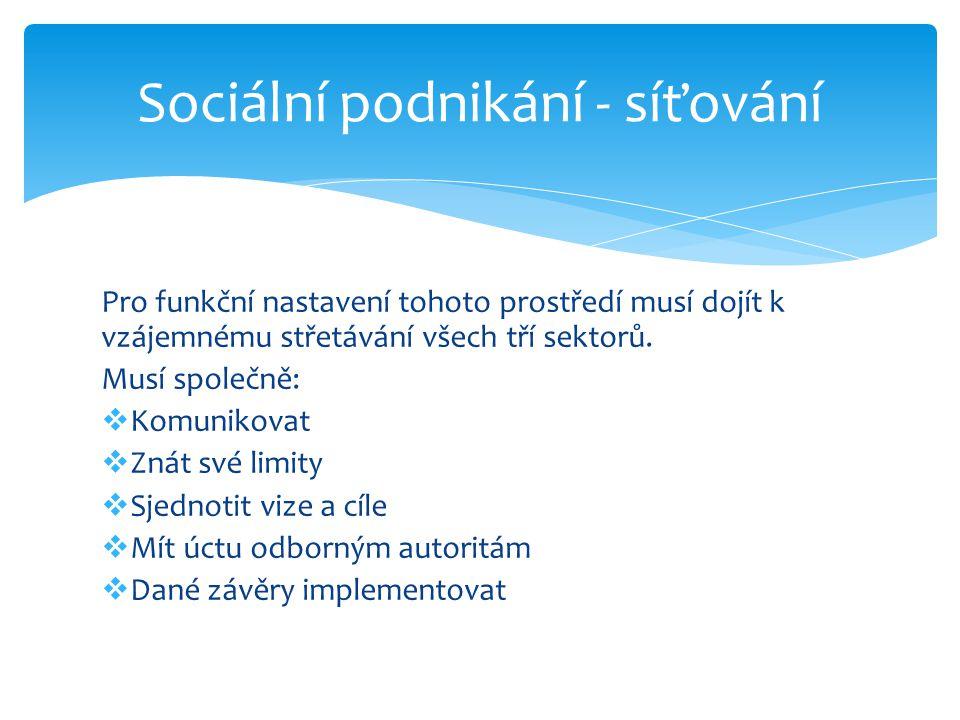Sociální podnikání - síťování
