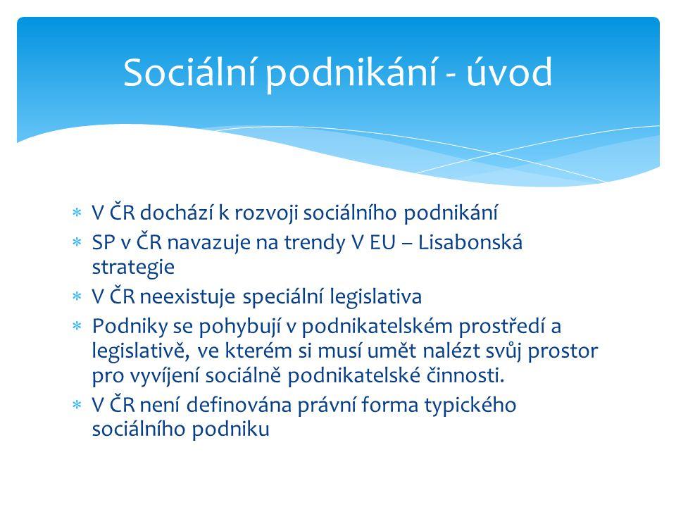 Sociální podnikání - úvod