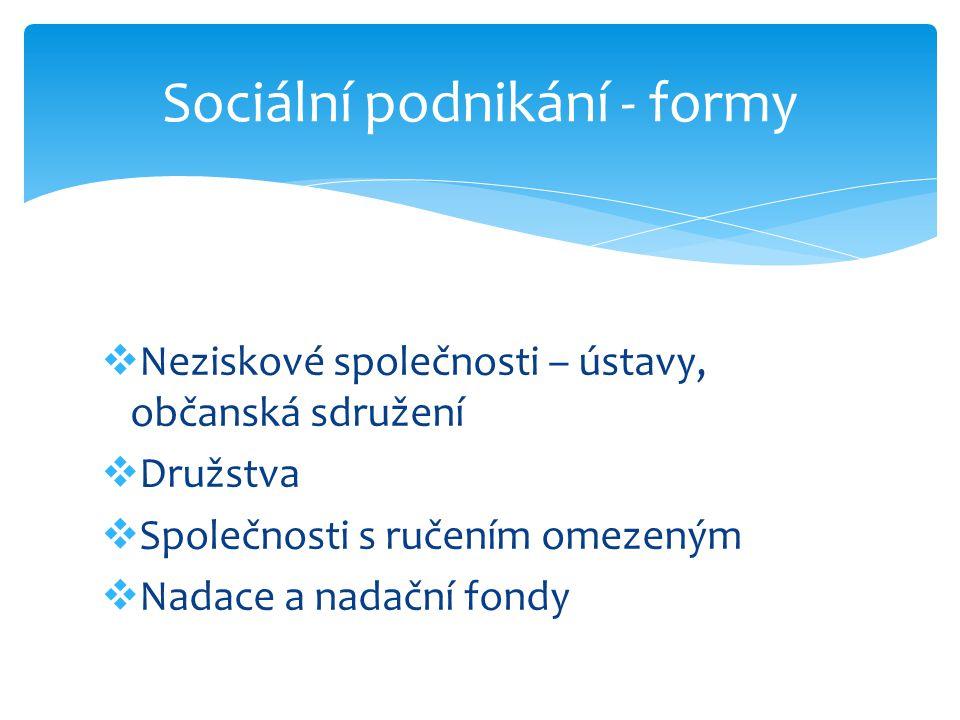 Sociální podnikání - formy