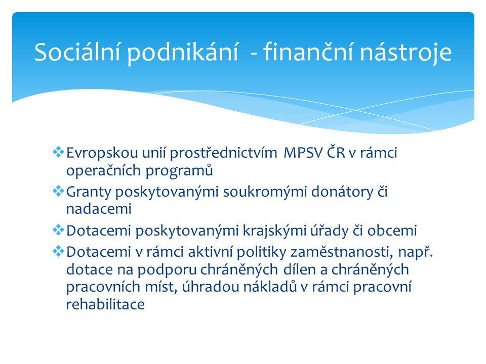 Sociální podnikání - finanční nástroje