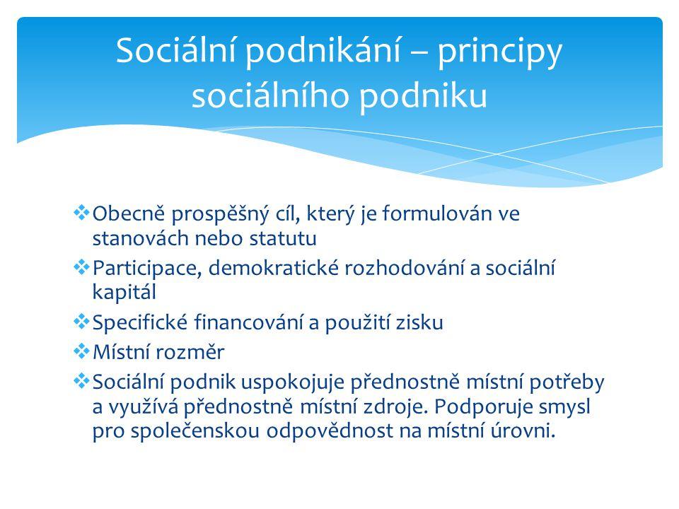 Sociální podnikání – principy sociálního podniku
