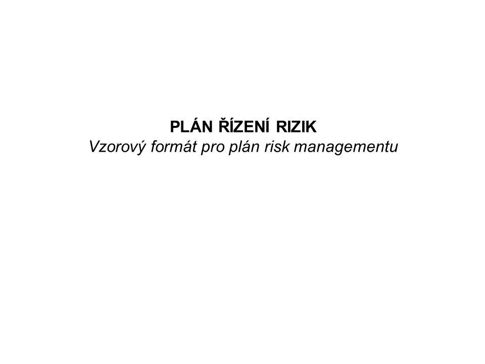 PLÁN ŘÍZENÍ RIZIK Vzorový formát pro plán risk managementu