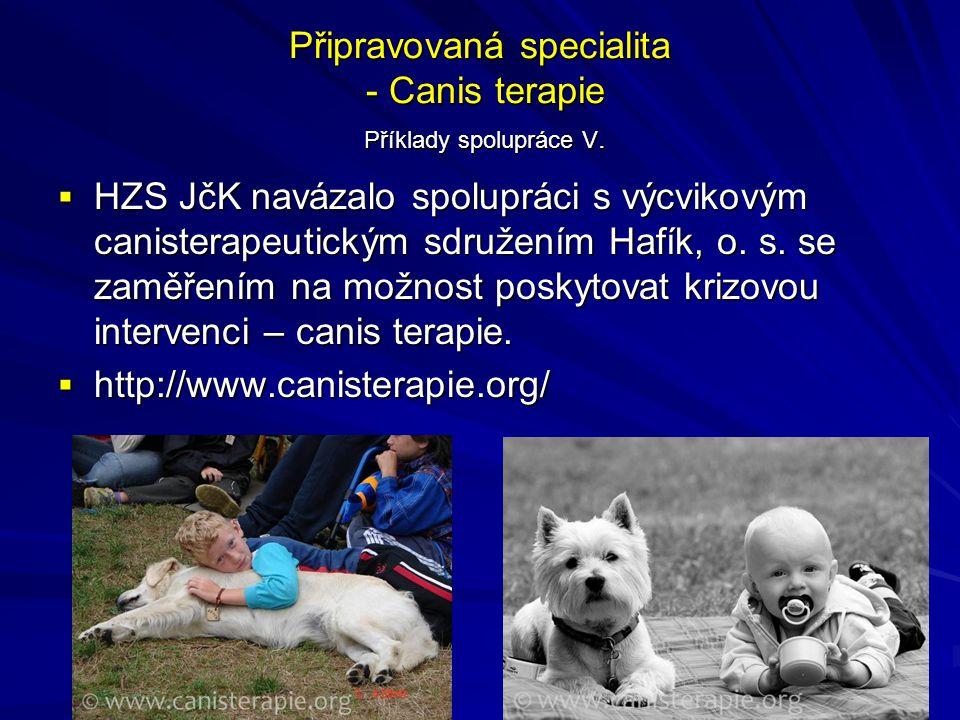 Připravovaná specialita - Canis terapie Příklady spolupráce V.