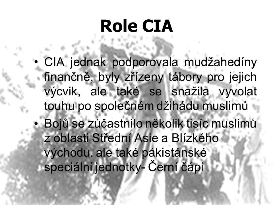 Role CIA