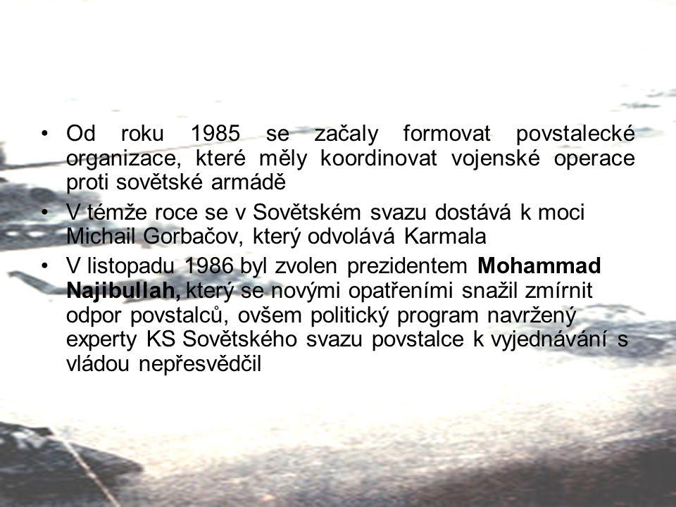 Od roku 1985 se začaly formovat povstalecké organizace, které měly koordinovat vojenské operace proti sovětské armádě
