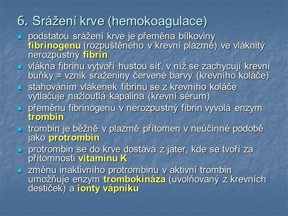 6. Srážení krve (hemokoagulace)