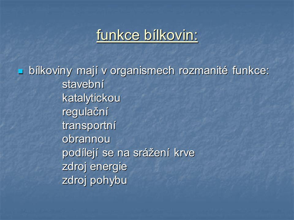 funkce bílkovin: bílkoviny mají v organismech rozmanité funkce: