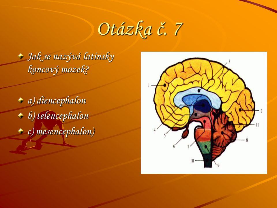 Otázka č. 7 Jak se nazývá latinsky koncový mozek a) diencephalon