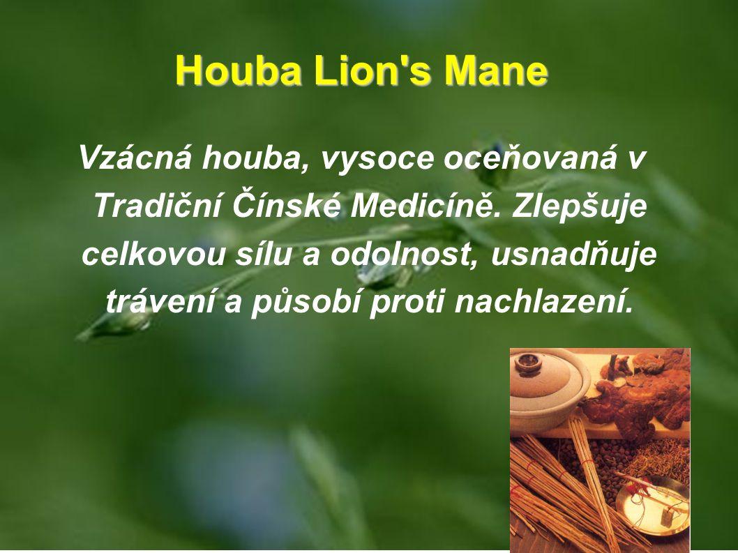 Houba Lion s Mane