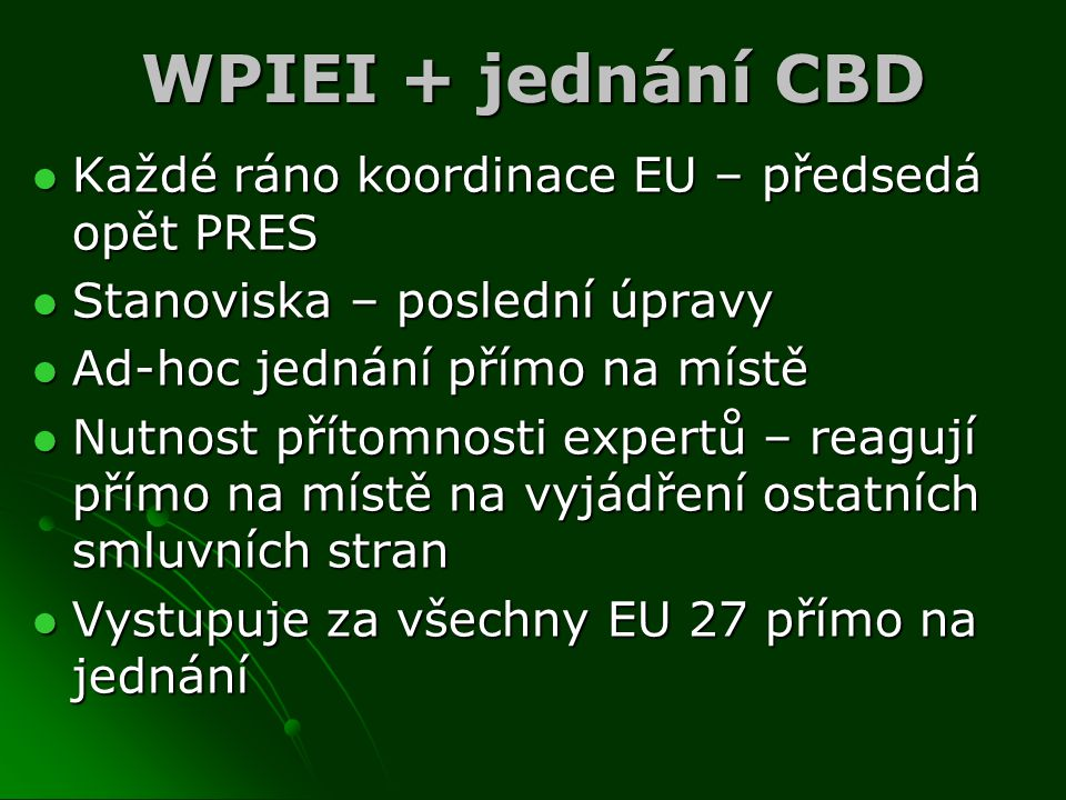 WPIEI + jednání CBD Každé ráno koordinace EU – předsedá opět PRES