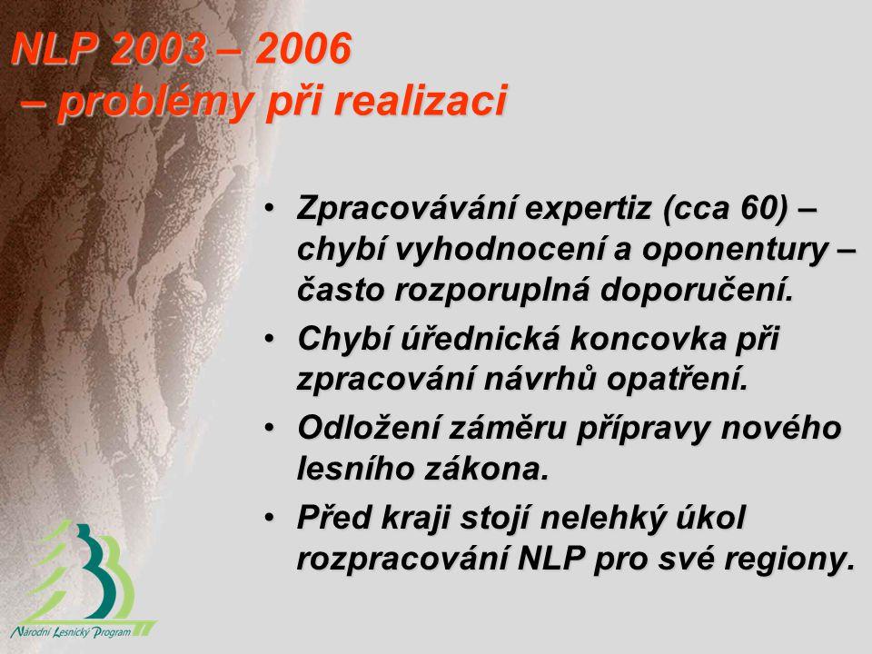NLP 2003 – 2006 – problémy při realizaci