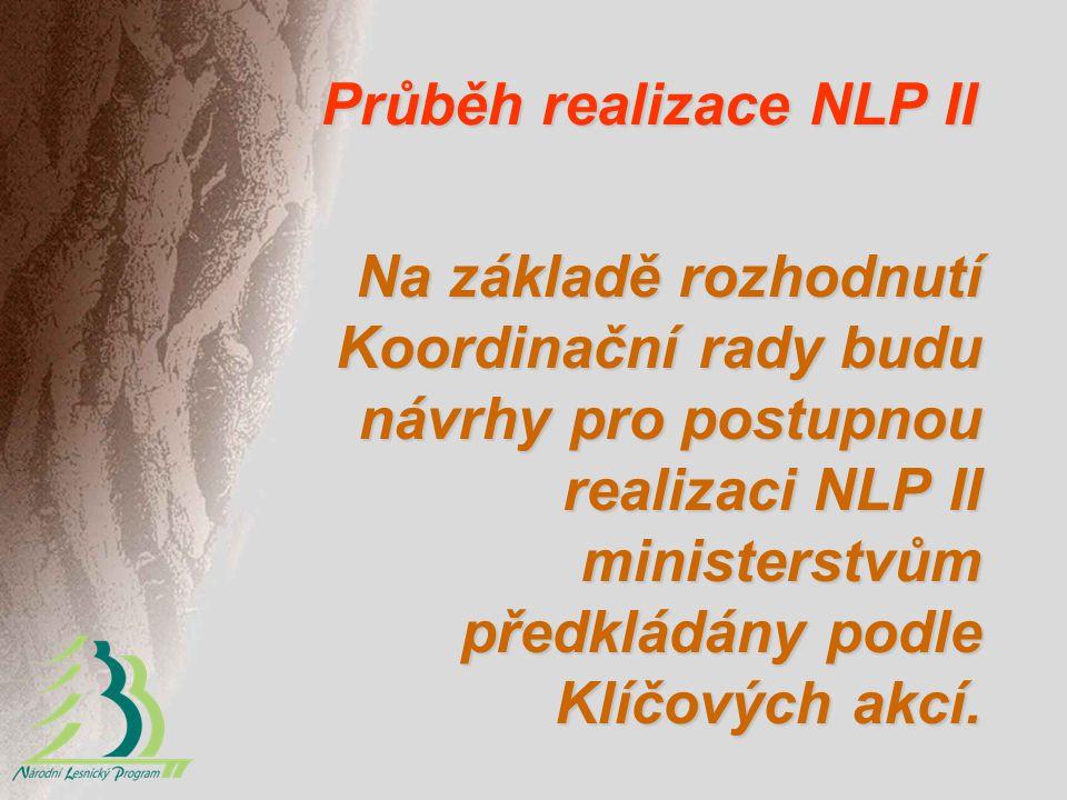 Průběh realizace NLP II