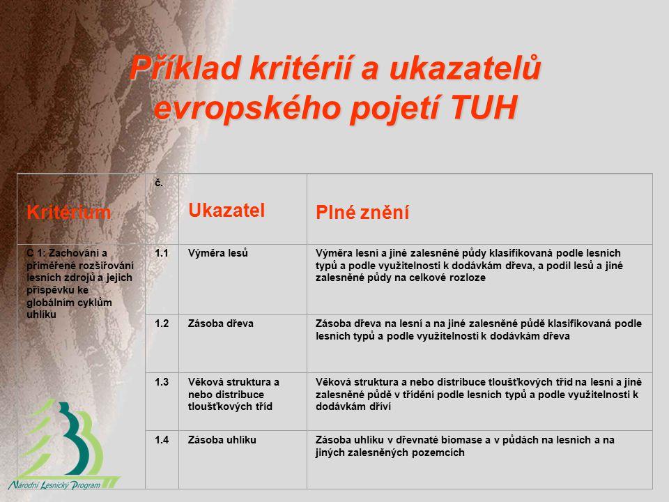 Příklad kritérií a ukazatelů evropského pojetí TUH