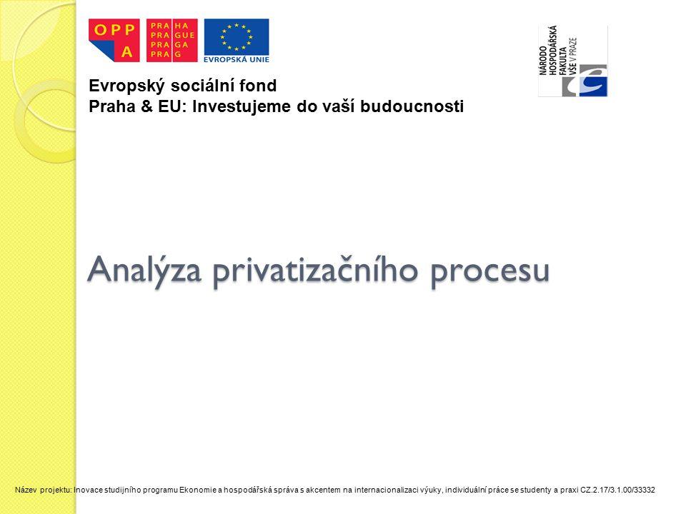 Analýza privatizačního procesu
