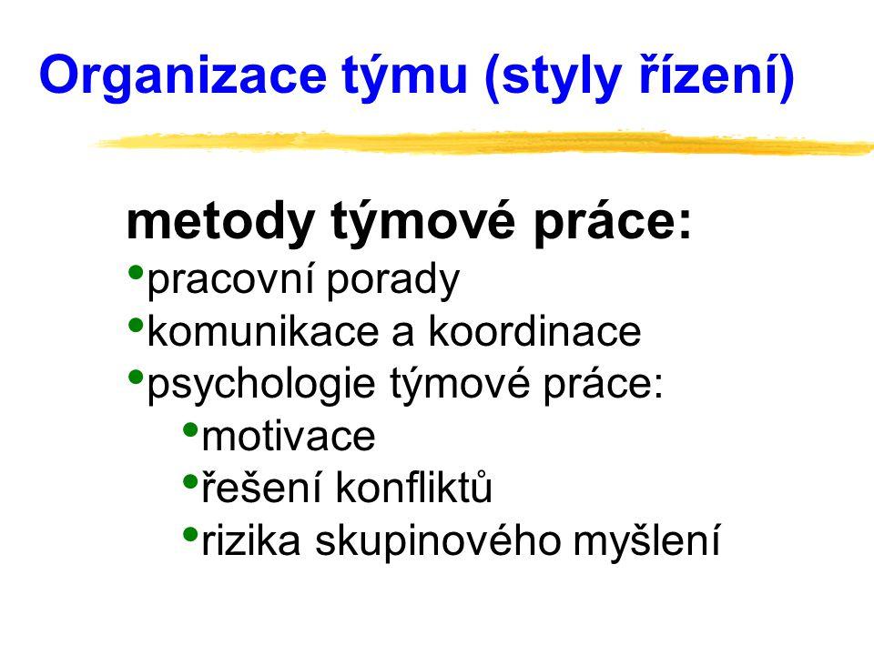 Organizace týmu (styly řízení)