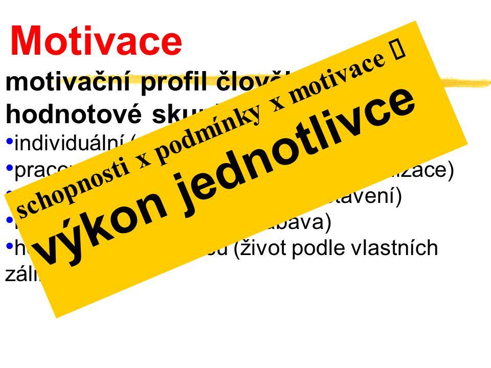 motivační profil člověka hodnotové skupiny: