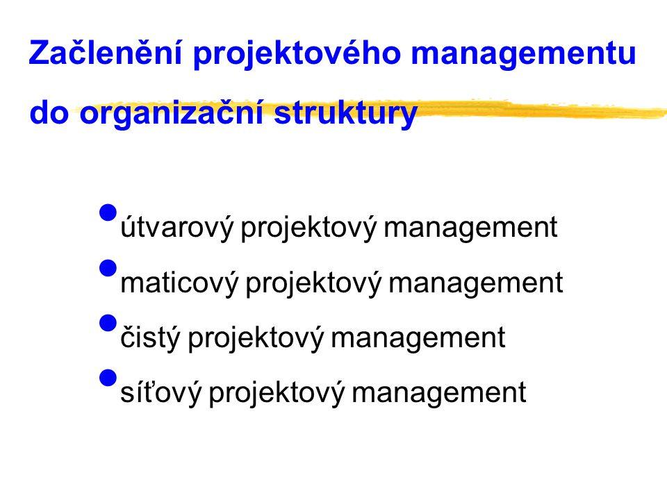 Začlenění projektového managementu do organizační struktury