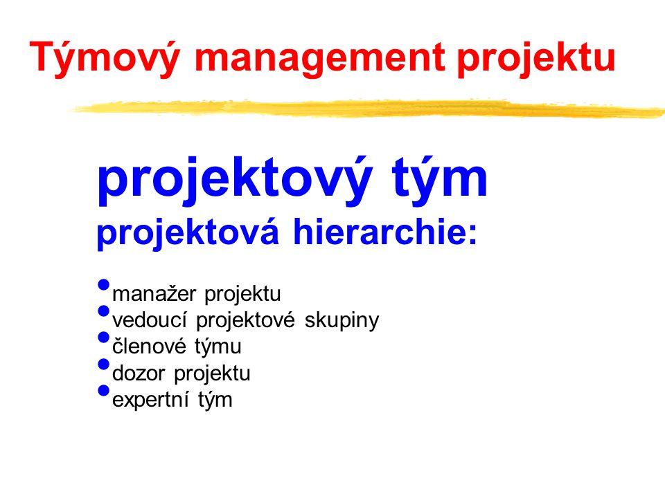 projektový tým Týmový management projektu projektová hierarchie: