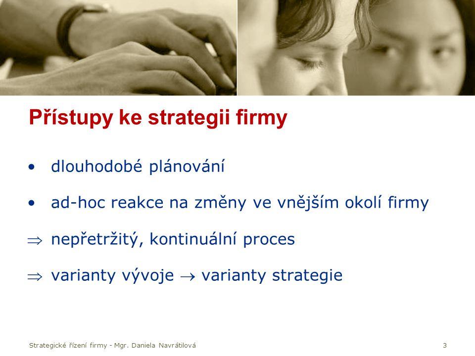 Přístupy ke strategii firmy