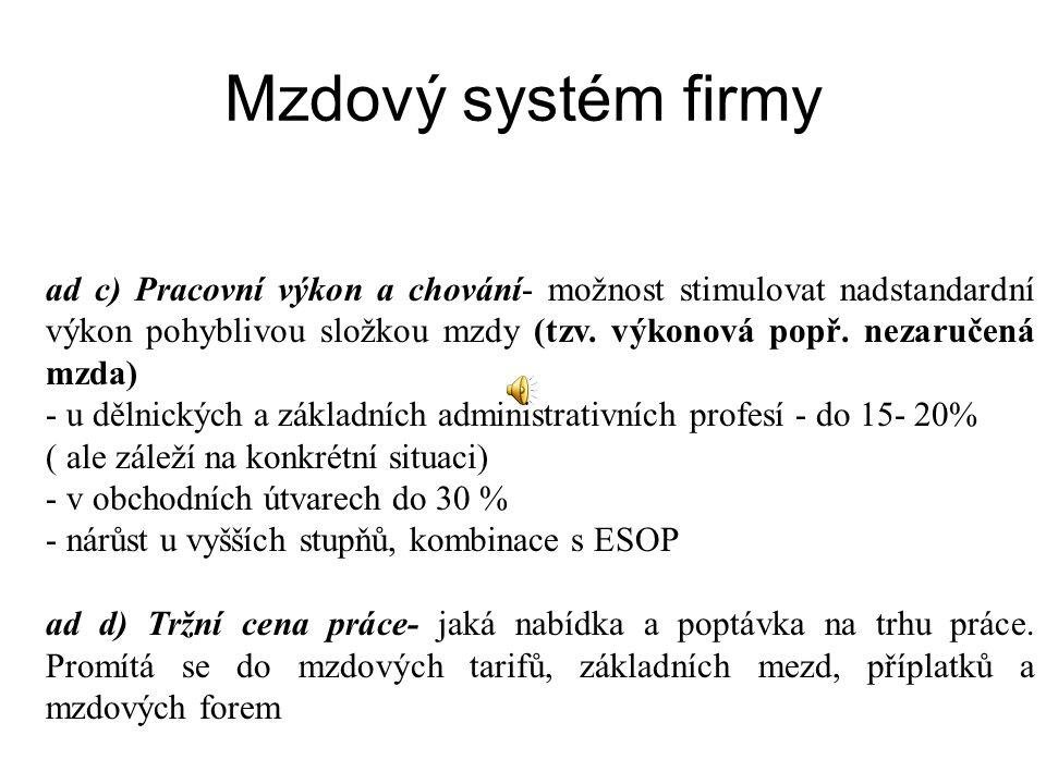 Mzdový systém firmy
