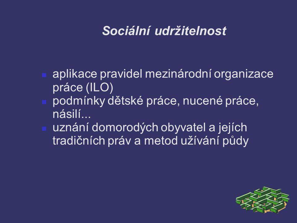 Sociální udržitelnost