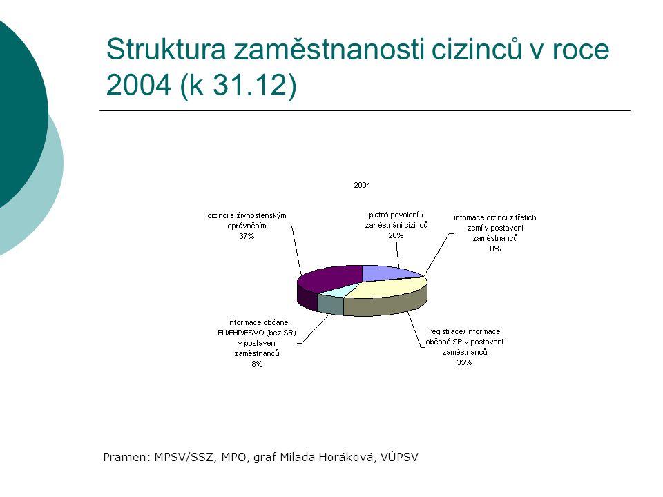 Struktura zaměstnanosti cizinců v roce 2004 (k 31.12)