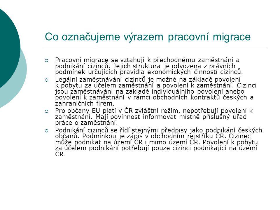 Co označujeme výrazem pracovní migrace