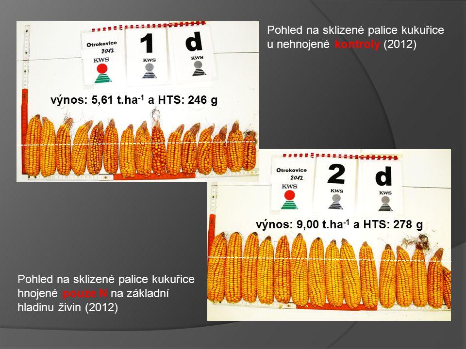 výnos: 5,61 t.ha-1 a HTS: 246 g Pohled na sklizené palice kukuřice. u nehnojené kontroly (2012) výnos: 9,00 t.ha-1 a HTS: 278 g.
