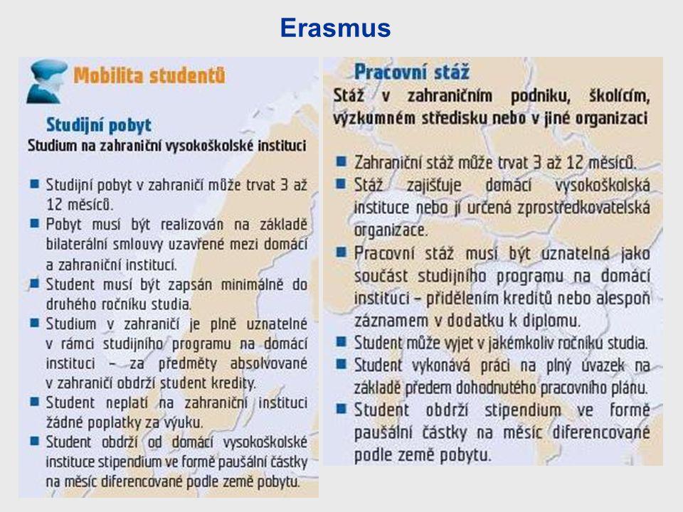 Erasmus 11