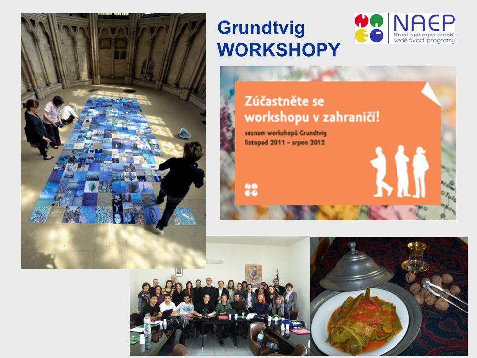 Grundtvig WORKSHOPY 13