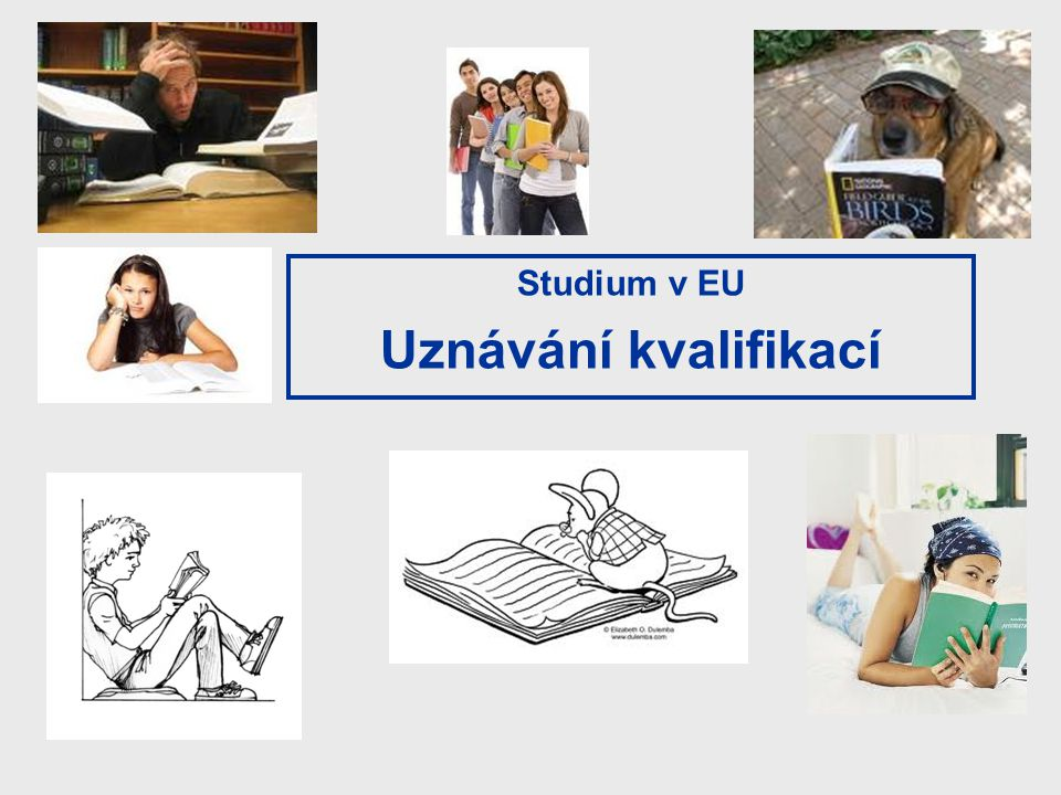 Studium v EU Uznávání kvalifikací 15