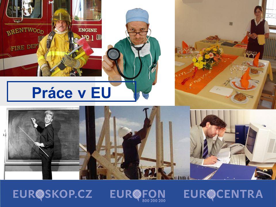 Práce v EU 29