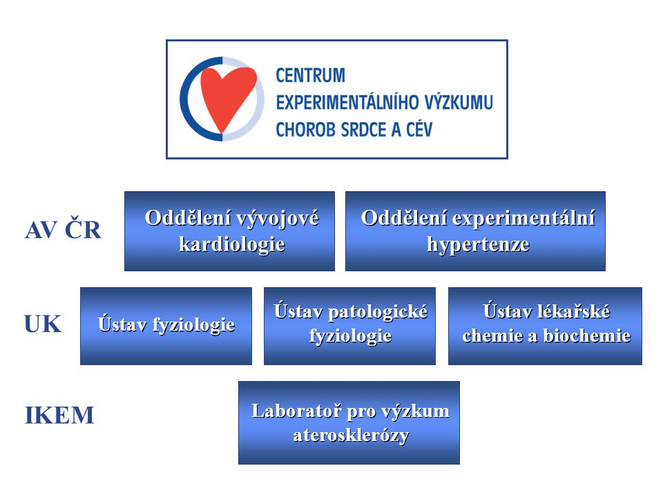 Oddělení vývojové kardiologie Oddělení experimentální hypertenze