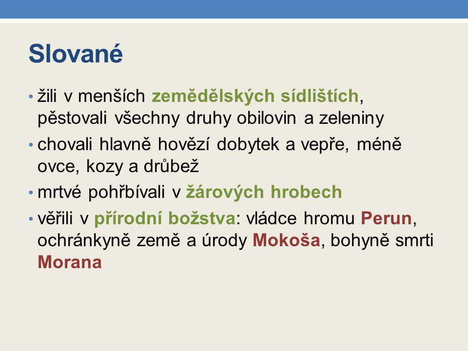 Slované žili v menších zemědělských sídlištích, pěstovali všechny druhy obilovin a zeleniny.