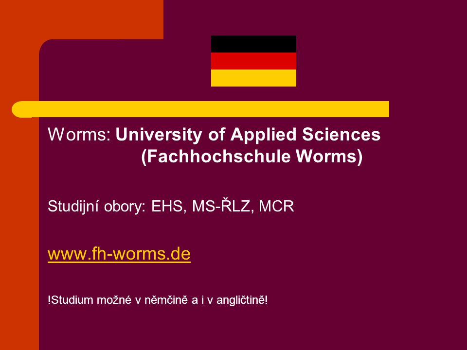 Worms: University of Applied Sciences (Fachhochschule Worms)
