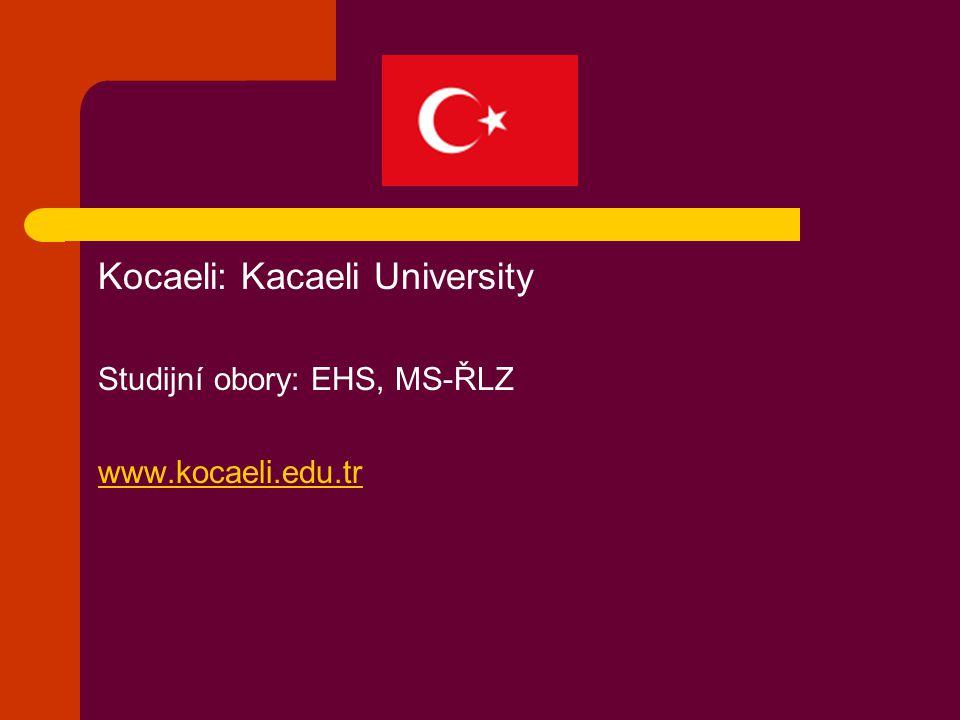 Kocaeli: Kacaeli University