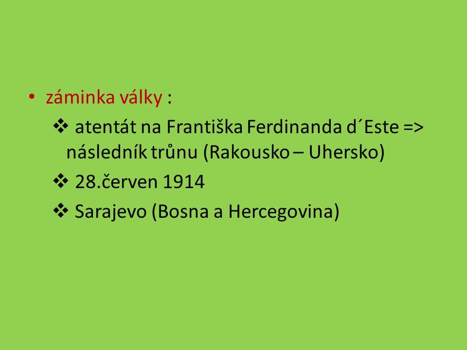 záminka války : atentát na Františka Ferdinanda d´Este => následník trůnu (Rakousko – Uhersko) 28.červen 1914.