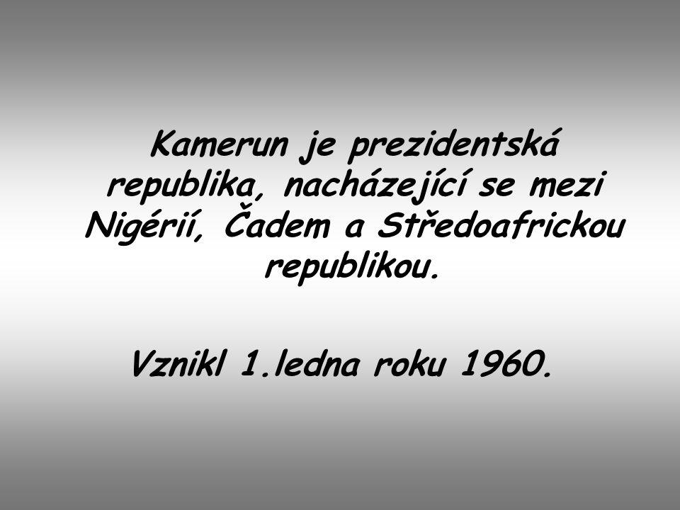 Kamerun je prezidentská republika, nacházející se mezi Nigérií, Čadem a Středoafrickou republikou.