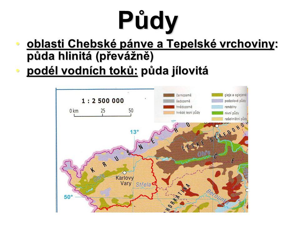 Půdy oblasti Chebské pánve a Tepelské vrchoviny: půda hlinitá (převážně) podél vodních toků: půda jílovitá.