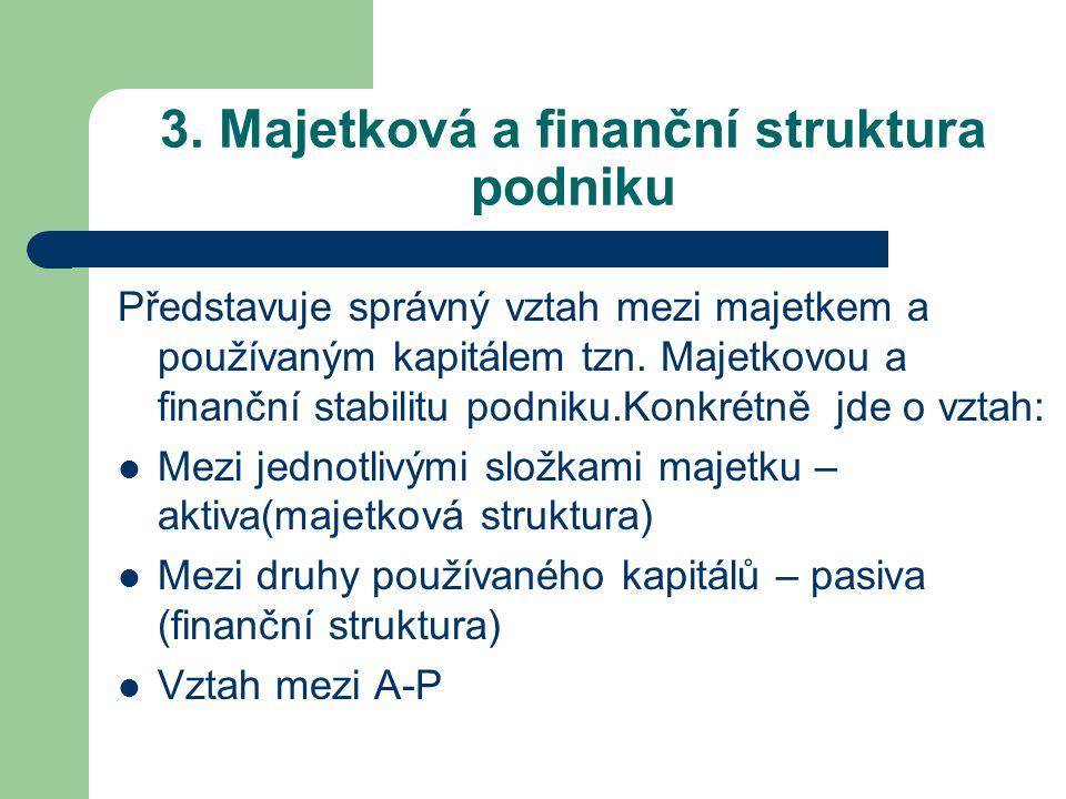 3. Majetková a finanční struktura podniku