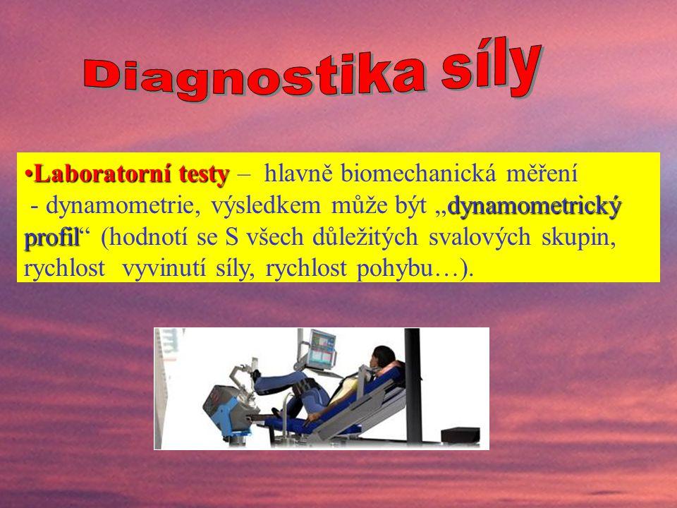 Laboratorní testy – hlavně biomechanická měření