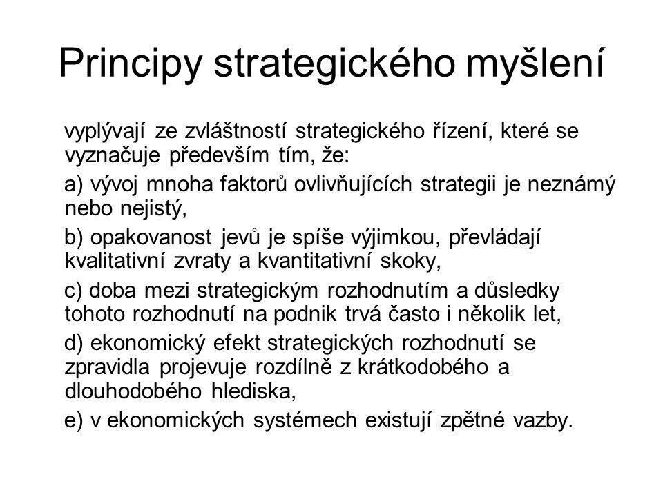 Principy strategického myšlení