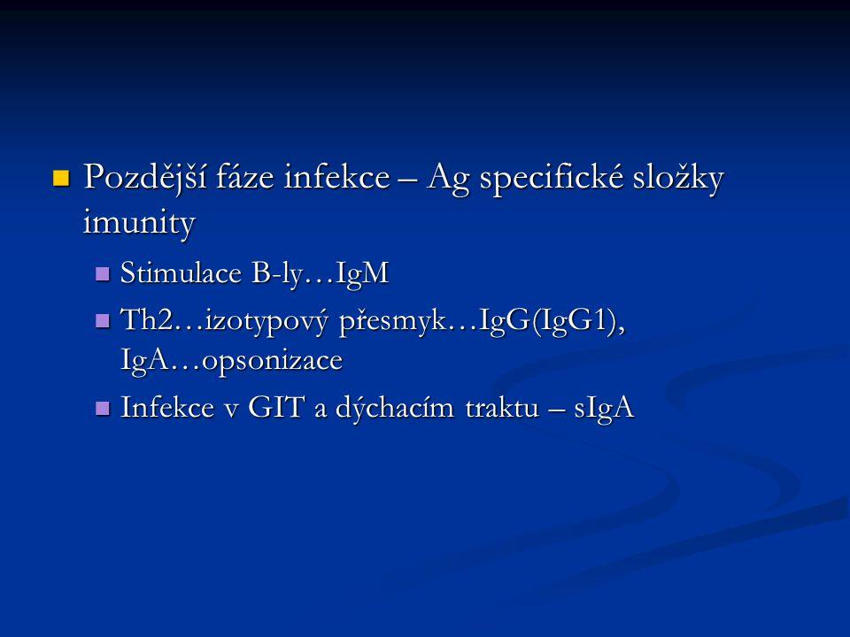 Pozdější fáze infekce – Ag specifické složky imunity