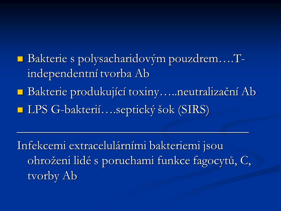 Bakterie s polysacharidovým pouzdrem….T-independentní tvorba Ab